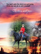 <h5>by Ruth Ann Kiger</h5><p>You can&#039;t calm the storm, so quit trying. What you can do is calm yourself. The storm will pass.</p>